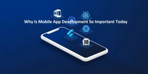 Why Is Mobile App Development So Important Today