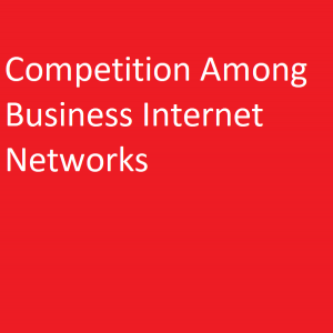 Competition Among Business Internet Networks